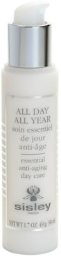 Sisley All Day All Year crema de día  antiarrugas 1
