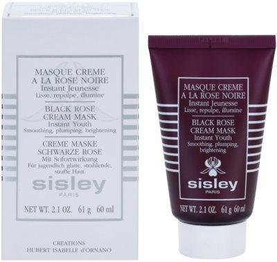 Sisley Masks Regenerierende Maske zur Verjüngung der Haut 2