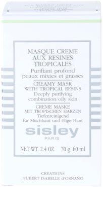 Sisley Masks máscara de limpeza para pele mista e oleosa 3