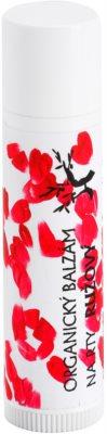 Soaphoria Lip Care rózsaszín organikus ajakbalzsam