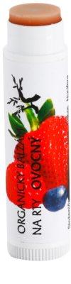 Soaphoria Lip Care organischer Lippenbalsam mit Früchten 1