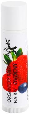 Soaphoria Lip Care bálsamo para lábios de fruta orgânica