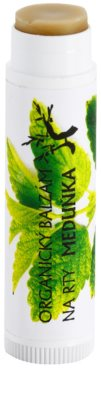 Soaphoria Lip Care Balsam de buze organic cu extract de roiniță 1