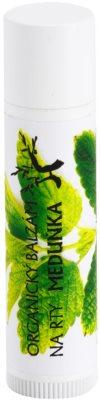 Soaphoria Lip Care meduňkový organický balzám na rty