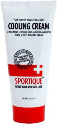 Sportique Sports chladivý masážny krém na svaly a kĺby