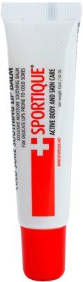 Sportique Sports balzam za ustnice pri prehladu