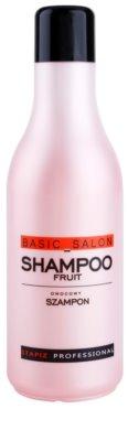 Stapiz Basic Salon Fruity Shampoo zur täglichen Anwendung