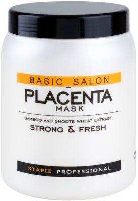 Stapiz Basic Salon Placenta maseczka nawilżająca do włosów osłabionych, łamliwych