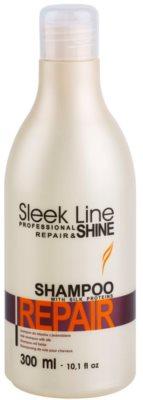Stapiz Sleek Line Repair erneuerndes Shampoo für beschädigtes und coloriertes Haar