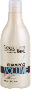 Stapiz Sleek Line Volume hydratisierendes Shampoo für feines Haar