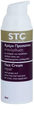 STC Face интензивно възстановяващ крем за уморена кожа 1