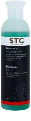 STC Hair champô para cabelos oleosos