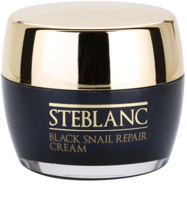 Steblanc Black Snail Repair регенериращ крем за уморена кожа