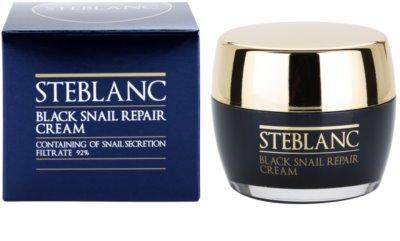 Steblanc Black Snail Repair регенериращ крем за уморена кожа 2