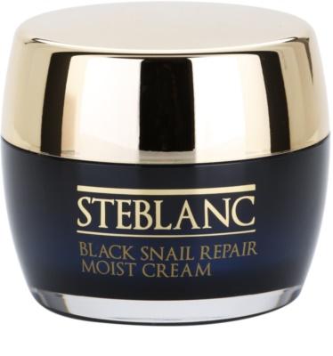 Steblanc Black Snail Repair поживний крем зі зволожуючим ефектом