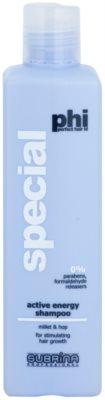 Subrina Professional PHI Special sampon energizant impotriva caderii parului