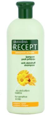 Subrina Professional Recept Sensitive Action champô anticaspa para o couro cabeludo sensível