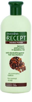 Subrina Professional Recept Double Power Shampoo gegen Schuppen und Haarausfall