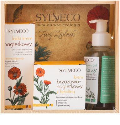 Sylveco Face Care set cosmetice II.
