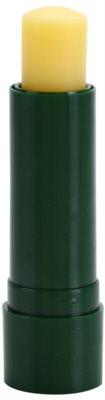 Sylveco Lip Care ajakvédő balzsam bambusszal 1