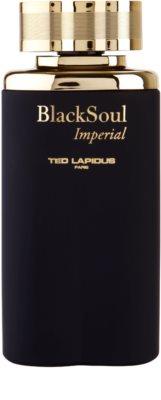 Ted Lapidus Black Soul Imperial toaletna voda za moške 2