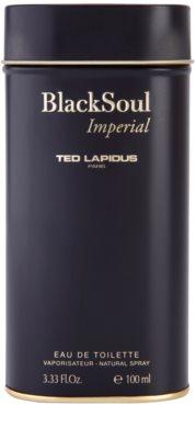 Ted Lapidus Black Soul Imperial toaletna voda za moške 4