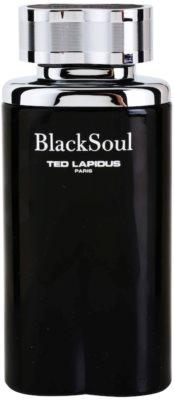Ted Lapidus Black Soul Eau de Toilette pentru barbati 2