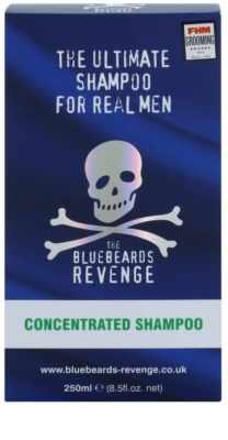 The Bluebeards Revenge Hair & Body sampon pentru barbati 2