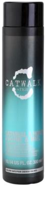 TIGI Catwalk Oatmeal & Honey champú nutritivo para cabello seco y sensibilizado
