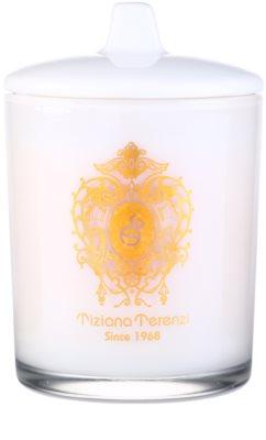 Tiziana Terenzi Ischia Orchid vela perfumada    pequeño con tapa 1