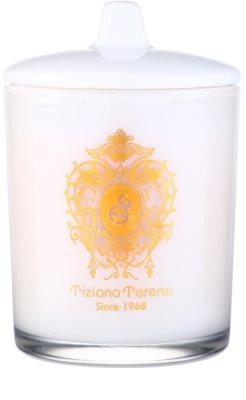 Tiziana Terenzi Lillipur ароматна свещ    малка с капачка 1