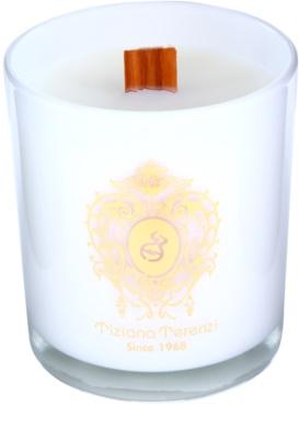 Tiziana Terenzi Mediterranean ароматна свещ    малка 2
