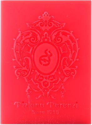 Tiziana Terenzi Spicy Snow ароматизована свічка 1