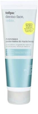 Tołpa Dermo Face Sebio hámlasztó maszk a bőr kisimításáért és a pórusok minimalizásáért
