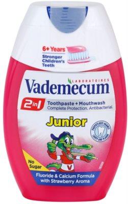 Vademecum 2 in1 Junior zubní pasta + ústní voda v jednom