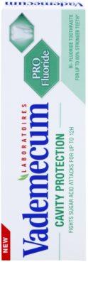 Vademecum Cavity Protection PRO Fluoride dentífrico anticárie 2