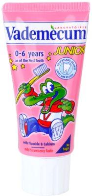 Vademecum Junior pasta de dinti pentru nou-nascuti cu aroma de capsuni