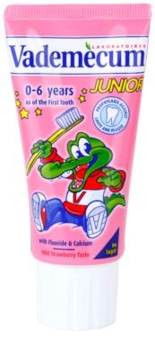Vademecum Junior zubní pasta pro děti od narození s jahodovou příchutí