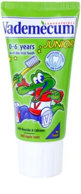 Vademecum Junior дитяча зубна паста з присмаком яблука