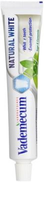 Vademecum Natural White zobna pasta za beljenje zob