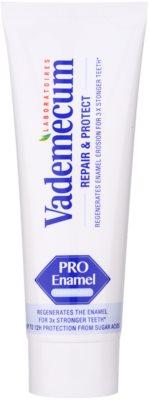 Vademecum Repair & Protect PRO Vitamin pasta reparatorie a smalrulului dintilor