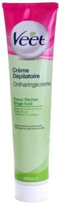 Veet Depilatory Cream creme depilatório para pele seca