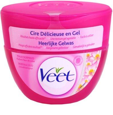 Veet Depilatory Gel depilační gel pro normální pokožku