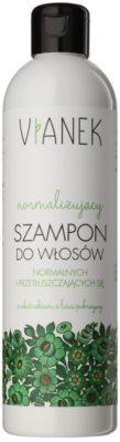 Vianek Energizing delikatny szampon do codziennego użytku do włosów normalnych i przetłuszczających się