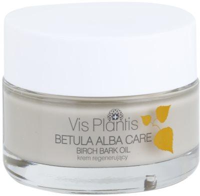 Vis Plantis Betula Alba Care crema facial regeneradora