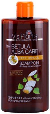 Vis Plantis Betula Alba Care sampon delicat pentru par si scalp