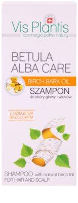 Vis Plantis Betula Alba Care champú suave para cabello y cuero cabelludo 2