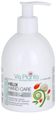Vis Plantis Helix Hand Care regenerierender Balsam für Hände und Fingernägel