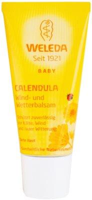 Weleda Baby and Child balsam protector pentru copii