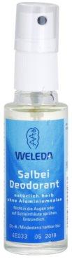 Weleda Body Care дезодорант със салвия мини